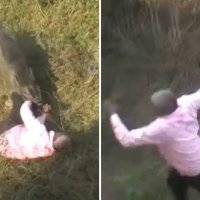 Man fights off wild boar in front of horrified crowd Any Articles